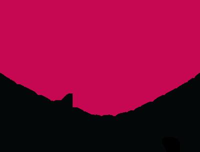 The Plastic Surgery Foundation